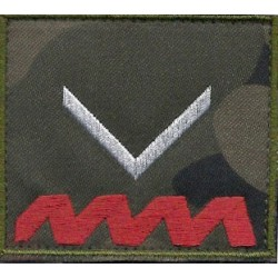 Sierżant ZS (komplet)