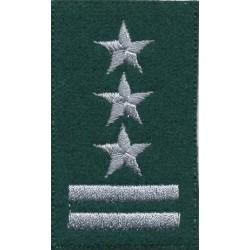 Pułkownik - beret zielony