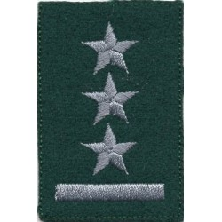 Porucznik - beret zielony