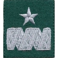 Generał brygady - beret zielony