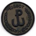 Emblemat 10 ŚBOT na mundur polowy (wg załącznika do Decyzji Nr77/MON z 10.05.2019 r.)