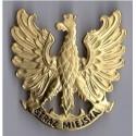 Orzeł metalowy Straży Miejskiej