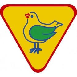 Ornitolog