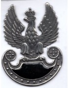 Metaloplastyka dla wojska